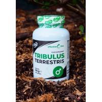 6PAK Tribulus Terrestris 90 tableta